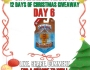 Skylander Addicts 12 Days of Christmas Giveaway-Day 6